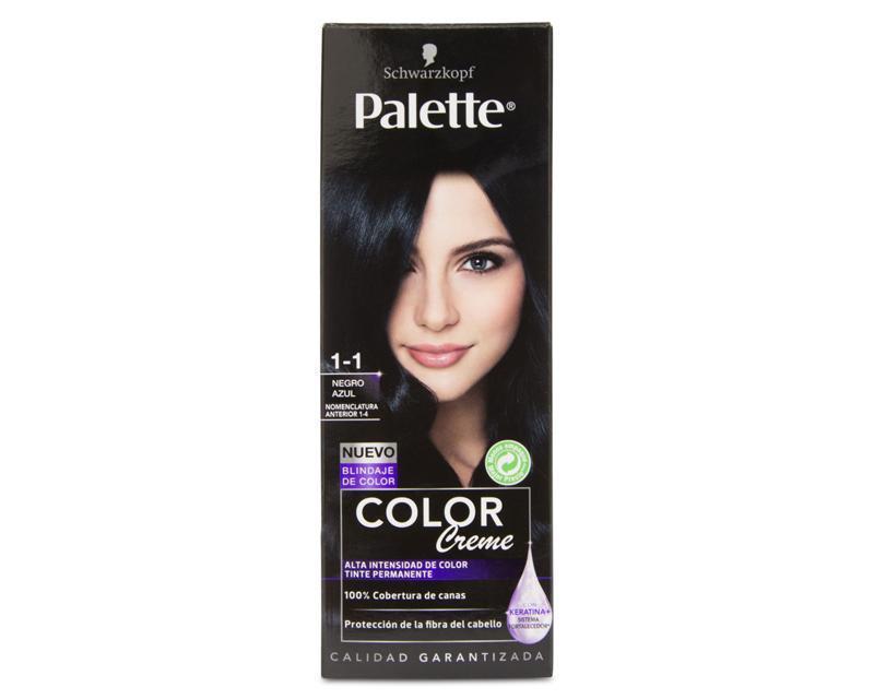tinte negro de palette